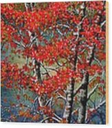 Autumn Reflections Wood Print by Janine Riley