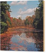 Autumn Reflections Wood Print by Joann Vitali