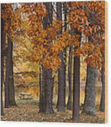 Autumn View Wood Print by Sandy Keeton