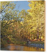 Autumn's Golden Pond Wood Print by Kim Hojnacki
