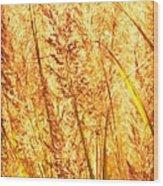 Autumns Passion Wood Print by Bob Orsillo