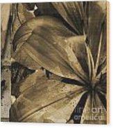 Awed V Wood Print by Yanni Theodorou