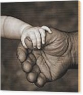 Babys Hand Holding On To Adult Hand Wood Print by Corey Hochachka