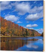 Bald Mountain Pond In Autumn Wood Print by David Patterson