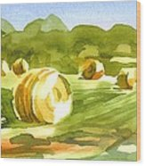 Bales In The Morning Sun Wood Print by Kip DeVore