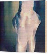 Ballet Slippers 1 Wood Print by Karen Larter