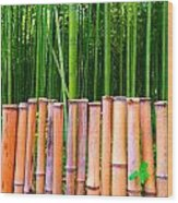 Bamboo Fence Wood Print by Julia Ivanovna Willhite