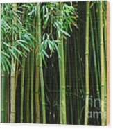 Bamboo Forest Maui Wood Print by Bob Christopher