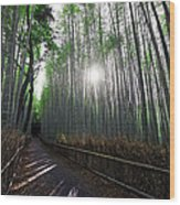 Bamboo Forest Path Of Kyoto Wood Print by Daniel Hagerman