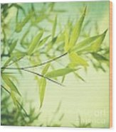 Bamboo In The Sun Wood Print by Priska Wettstein