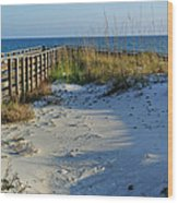 Beach And The Walkway  Wood Print by Michael Thomas