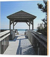 Beach Walk Wood Print by Silvie Kendall
