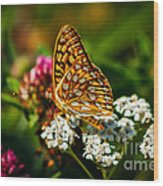 Beautiful Butterfly Wood Print by Robert Bales
