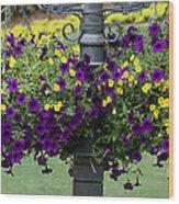 Beautiful Hanging Flowers Wood Print by Sabrina L Ryan