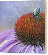 Beetlemania Wood Print by Juli Scalzi