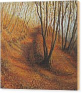 Beyond Silence Wood Print by Kiril Stanchev
