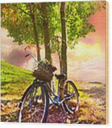 Bicycle Under The Tree Wood Print by Debra and Dave Vanderlaan