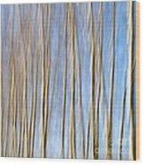 Birch Trees Wood Print by Stelios Kleanthous