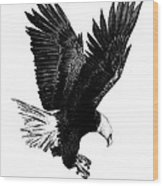 Black And White With Pen And Ink Drawing Of American Bald Eagle  Wood Print by Mario Perez