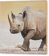 Black Rhinoceros Wood Print by Johan Swanepoel