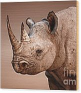 Black Rhinoceros Portrait Wood Print by Johan Swanepoel