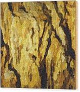 Blanchard Springs Caverns-arkansas Series 04 Wood Print by David Allen Pierson