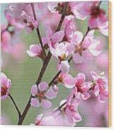 Blossoming Hillside Wood Print by Melanie Moraga
