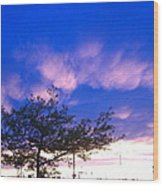 Blue And Purple Skies At Sunset Wood Print by Elisabeth Ann
