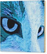 Blue Cat Face Wood Print by Ann Powell