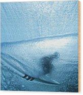 Blue Cocoon Wood Print by Sean Davey