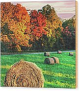 Blue Ridge - Fall Colors Autumn Colorful Trees And Hay Bales II Wood Print by Dan Carmichael