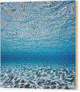 Blue Sea Wood Print by Sean Davey