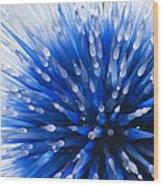 Blue Starburst Wood Print by Caroline Roberti