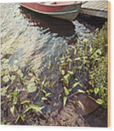 Boat At Dock  Wood Print by Elena Elisseeva