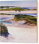 Brewster Ebb Tide Wood Print by Karol Wyckoff
