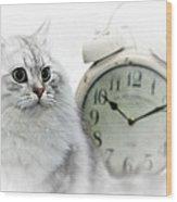 British Longhair Cat Time Goes By II Wood Print by Melanie Viola
