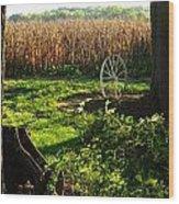Bruce's Place Wood Print by Julie Dant