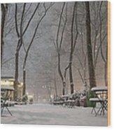 Bryant Park - Winter Snow Wonderland - Wood Print by Vivienne Gucwa