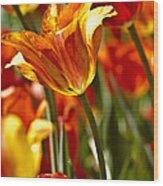 Tulips-flowers-tulips Burning Wood Print by Matthew Miller