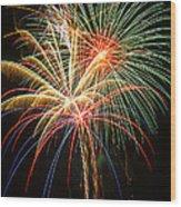 Bursting In Air Wood Print by Garry Gay