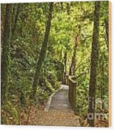 Bush Pathway Waikato New Zealand Wood Print by Colin and Linda McKie