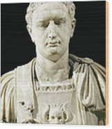 Bust Of Emperor Domitian Wood Print by Anonymous