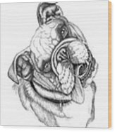 Buster Wood Print by Catherine Garneau