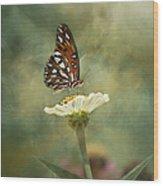 Butterfly Dreams Wood Print by Kim Hojnacki
