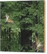 Butterfly Waltz Wood Print by Debra     Vatalaro