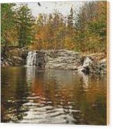 Buttermilk Falls Wood Print by Dennis Clark