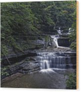 Buttermilk Waterfalls Wood Print by David Simons
