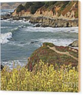 California Coast Overlook Wood Print by Carol Groenen
