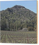 California Vineyards In Late Winter Just Before The Bloom 5d22142 Wood Print by Wingsdomain Art and Photography