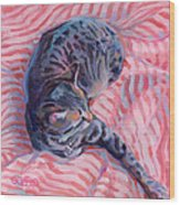 Candy Cane Wood Print by Kimberly Santini